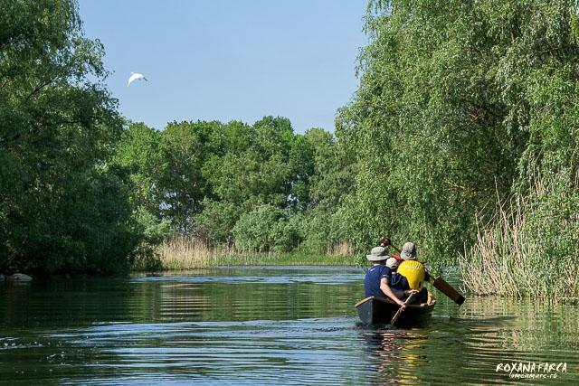 Cu canotca prin Delta Dunării