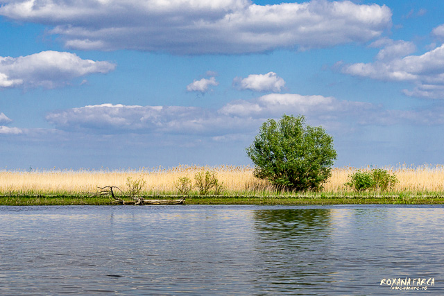 Delta-Dunarii-canotca-1509