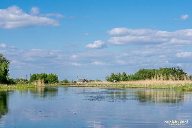 Delta-Dunarii-canotca-1540