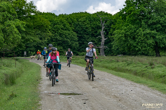 transylvania-by-bike-2802