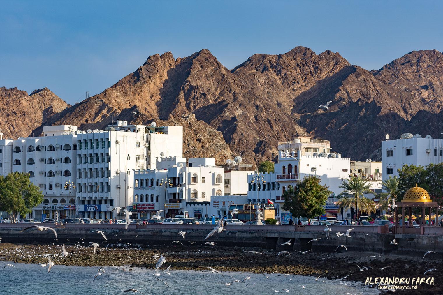 Oman-2993
