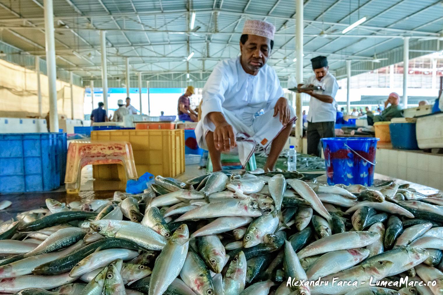 Oman-Muscat-3351