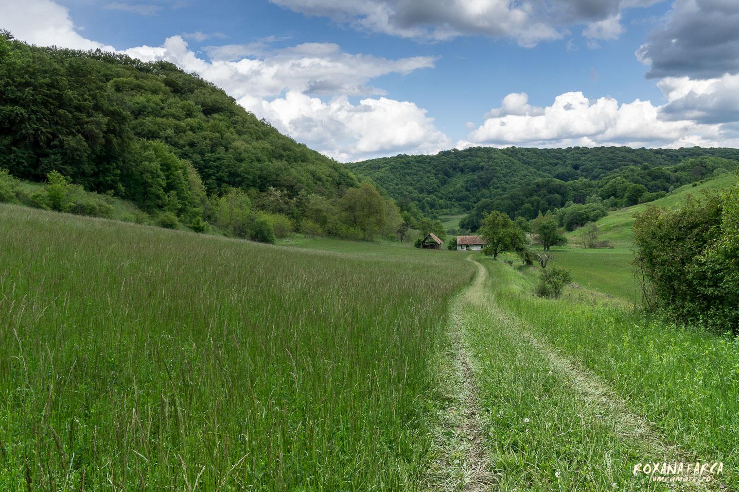 Transylvania-by-bike-2904