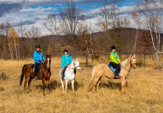 Plimbare in familie la Equus Silvania