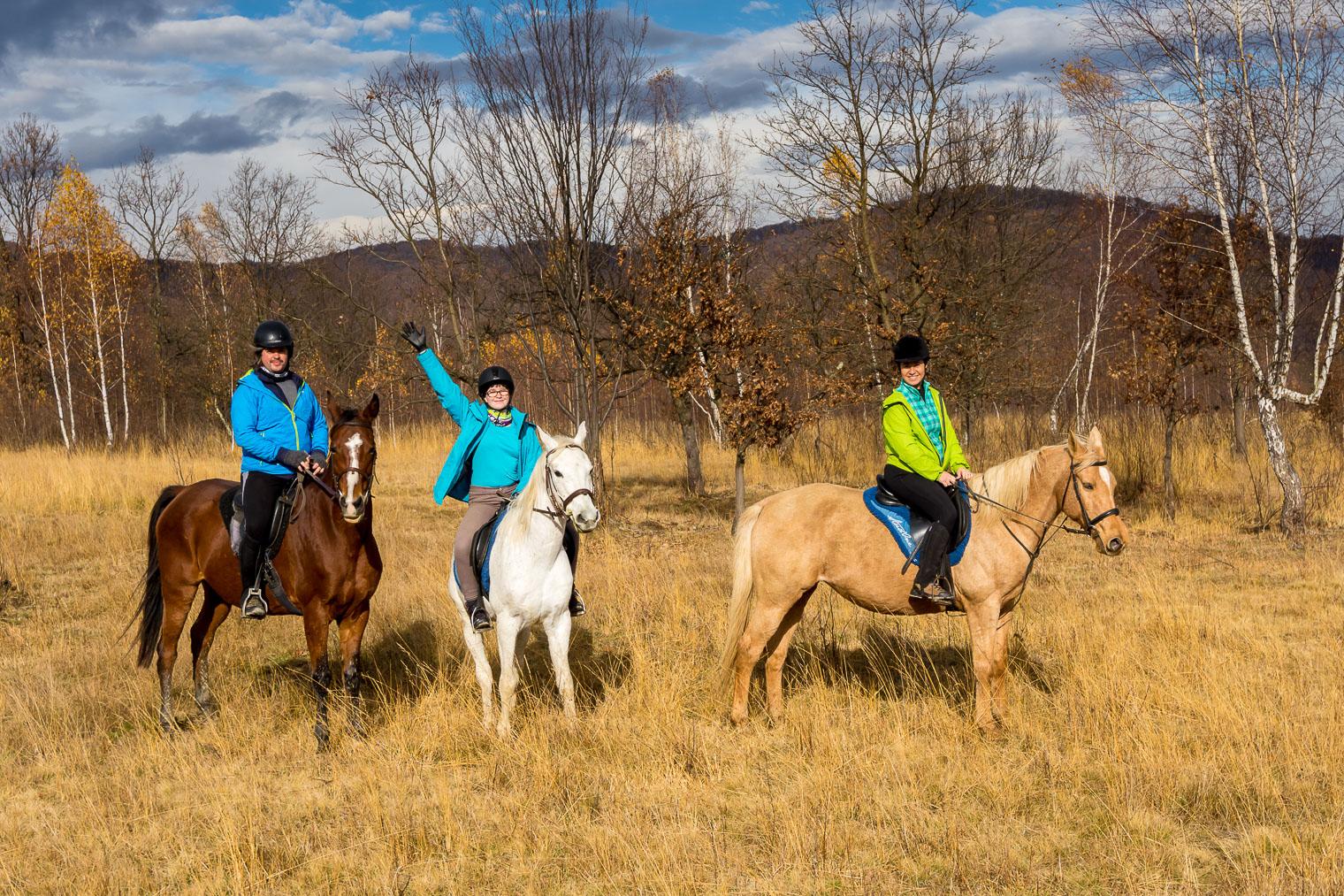 equus-silvana-2302