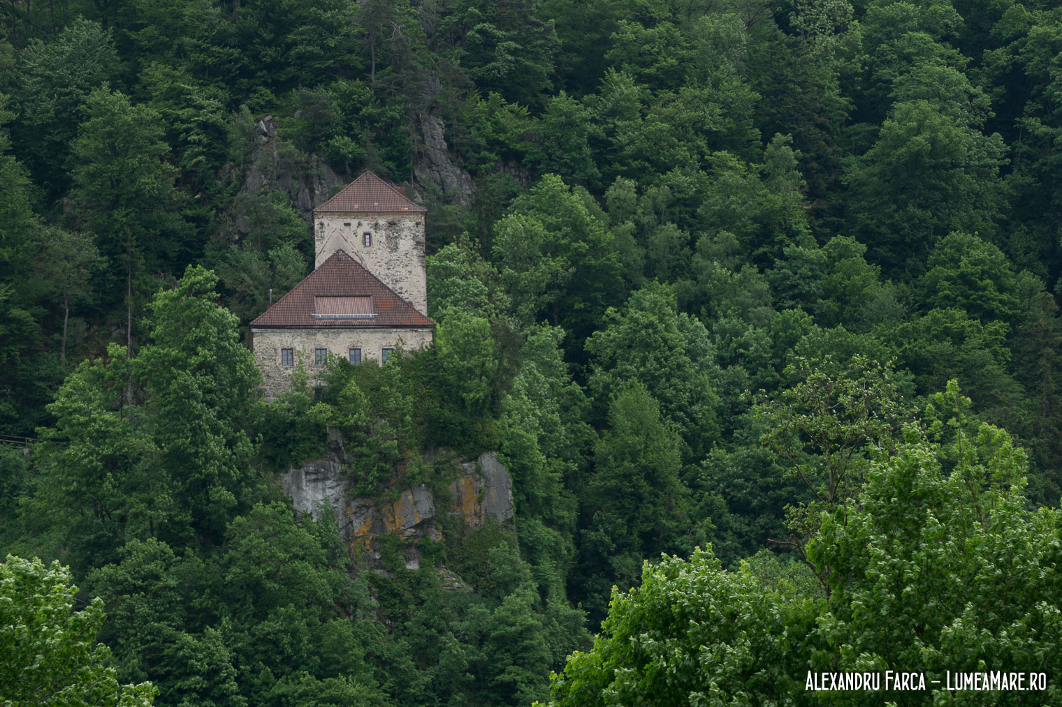 Donauradweg - Oberszell