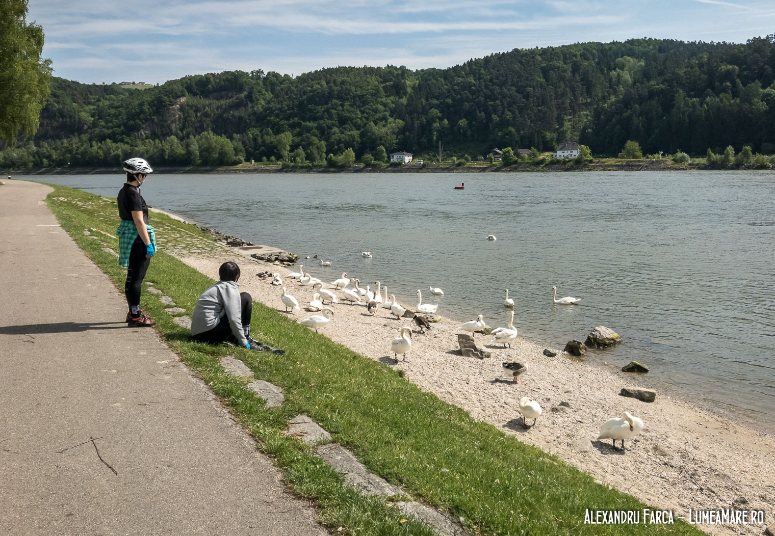 Donauradweg - Aschah