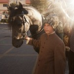 Targoviste days festivities