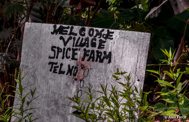 Welcome in Spice Tour