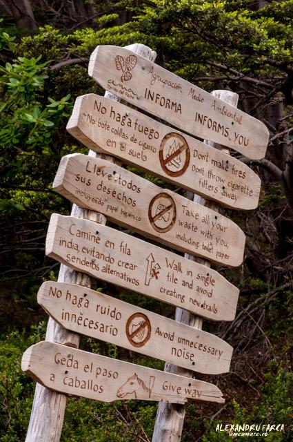 Reguli Torres del Paine