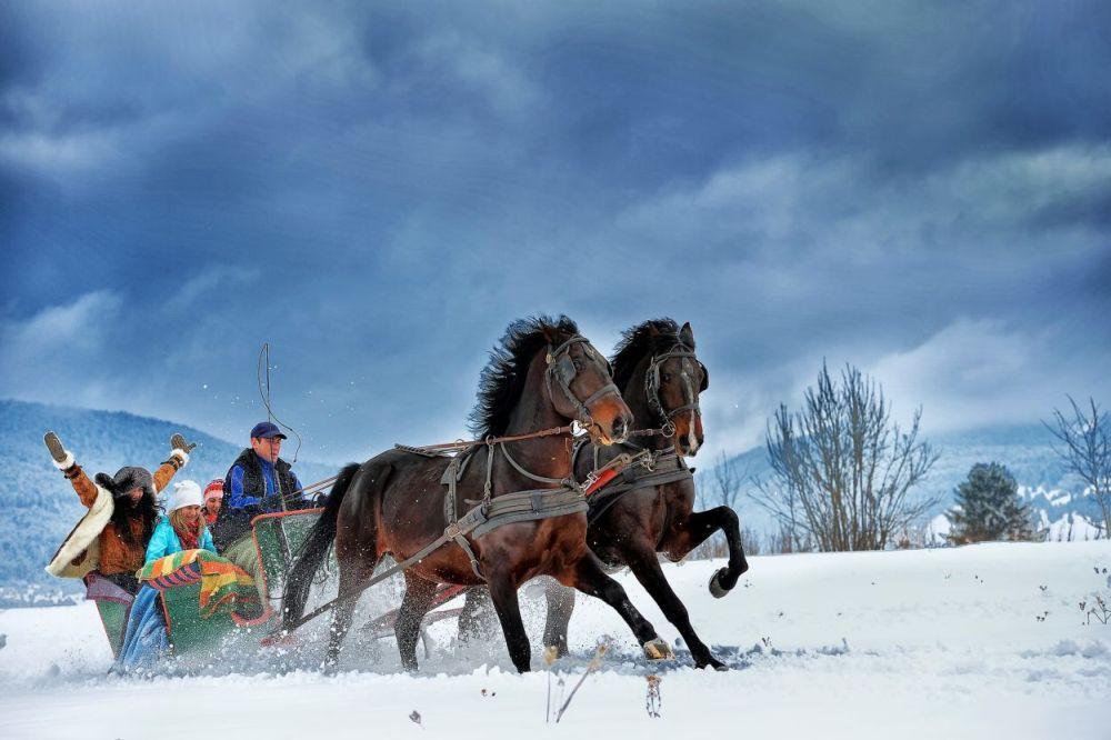 Plimbare cu sania trasă de cai la Băile Tușnad