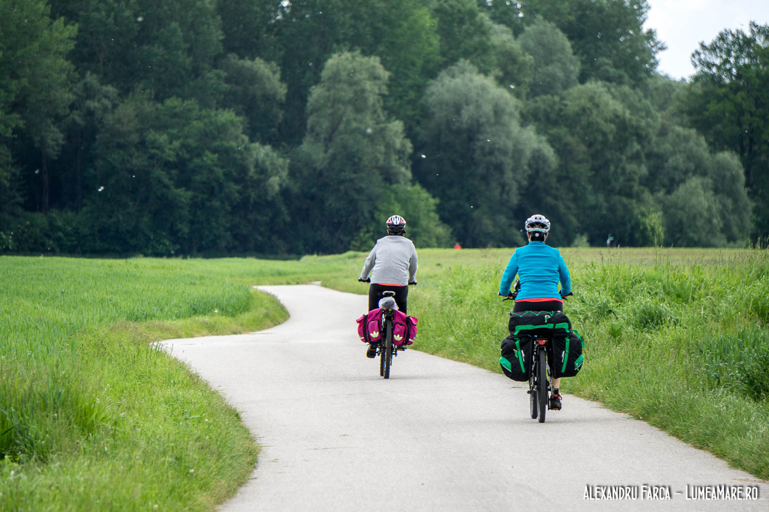Pista de biciclete dintre Linz și Enns