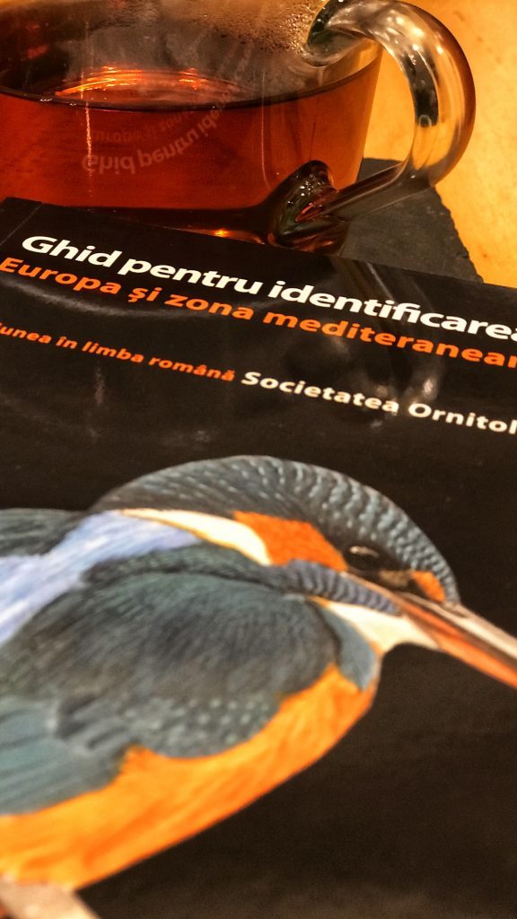 Ghid pentru identificarea pasarilor din Europa și zona mediteraneană