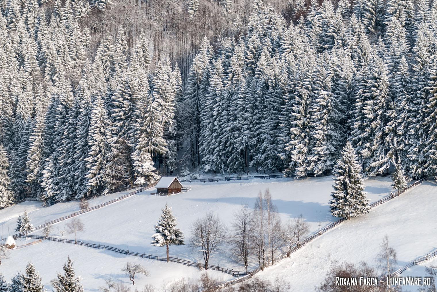 Vacanța de iarnă în România, la munte. Peisaj din apropiere de Șirnea.