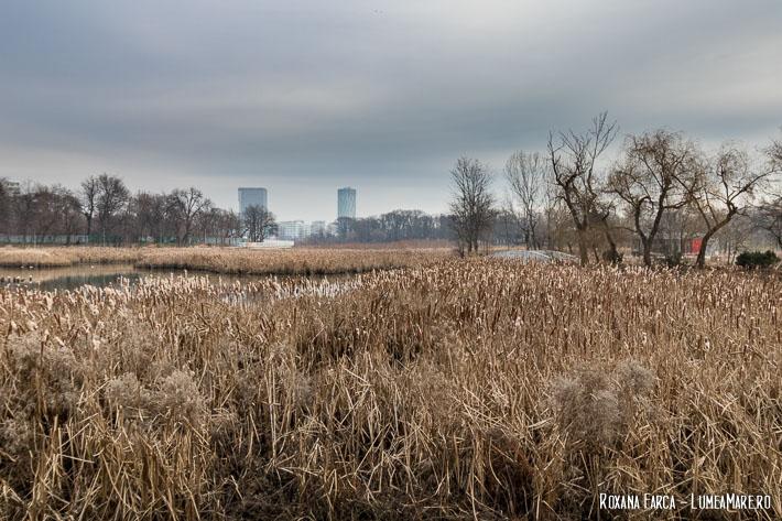 Parcul Bordei iarna