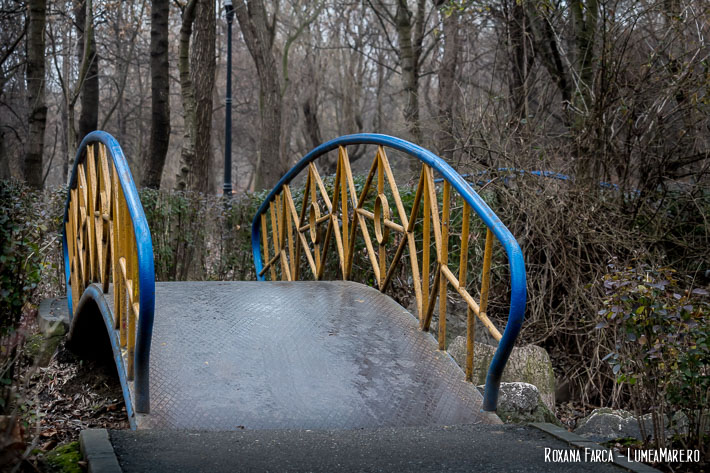 Poduri în Parcul Plumbuita