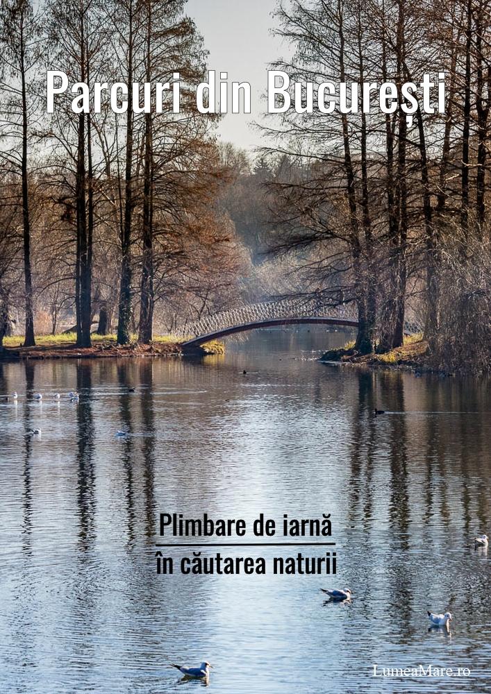 Parcuri din Bucuresti