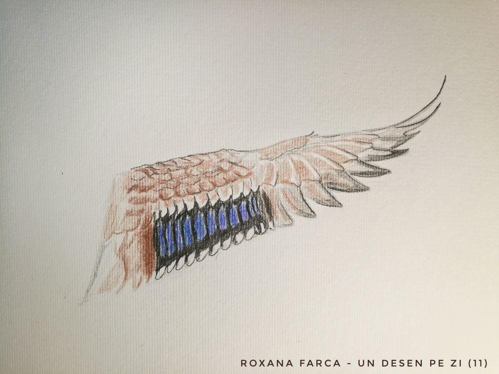 desen aripă