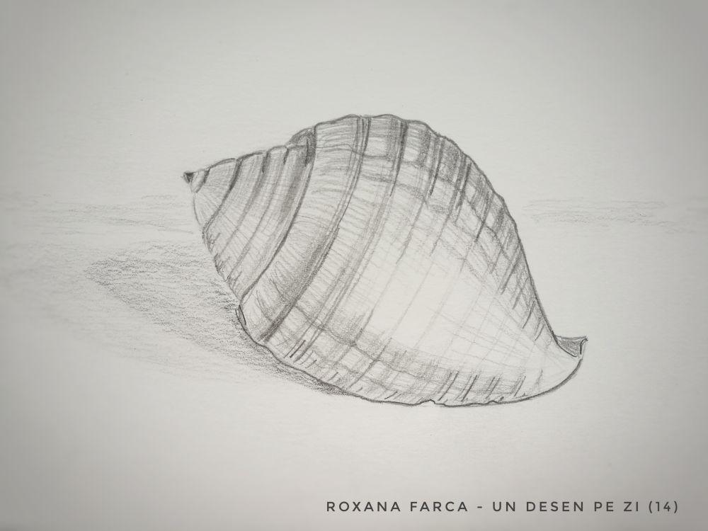 Scoica desen