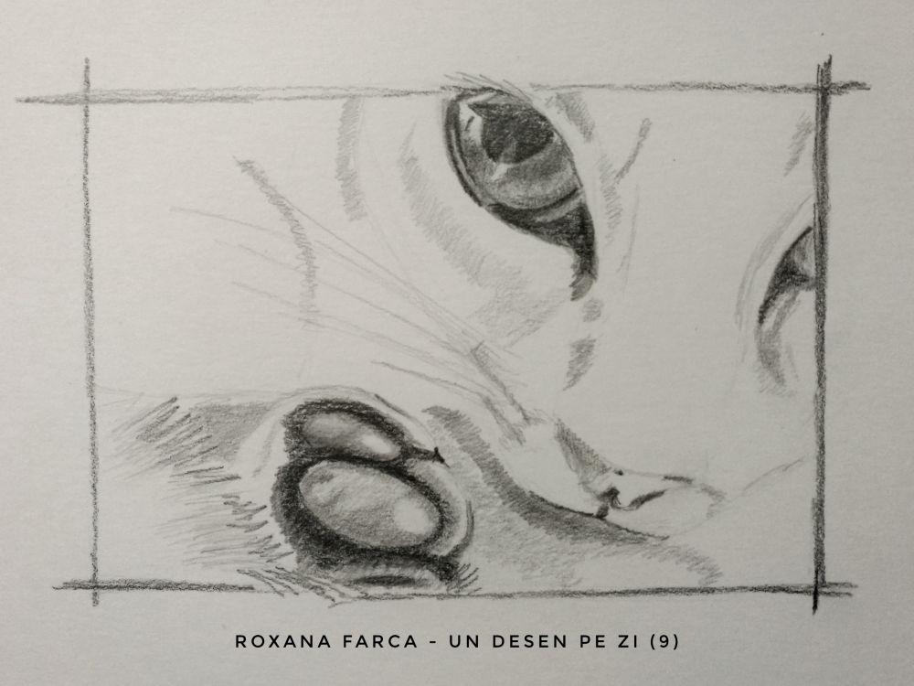 Desen labuta si ochi de pisica