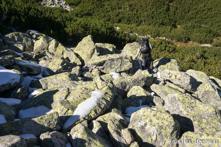 Spre lacul Ștevia, sub vârful Retezat