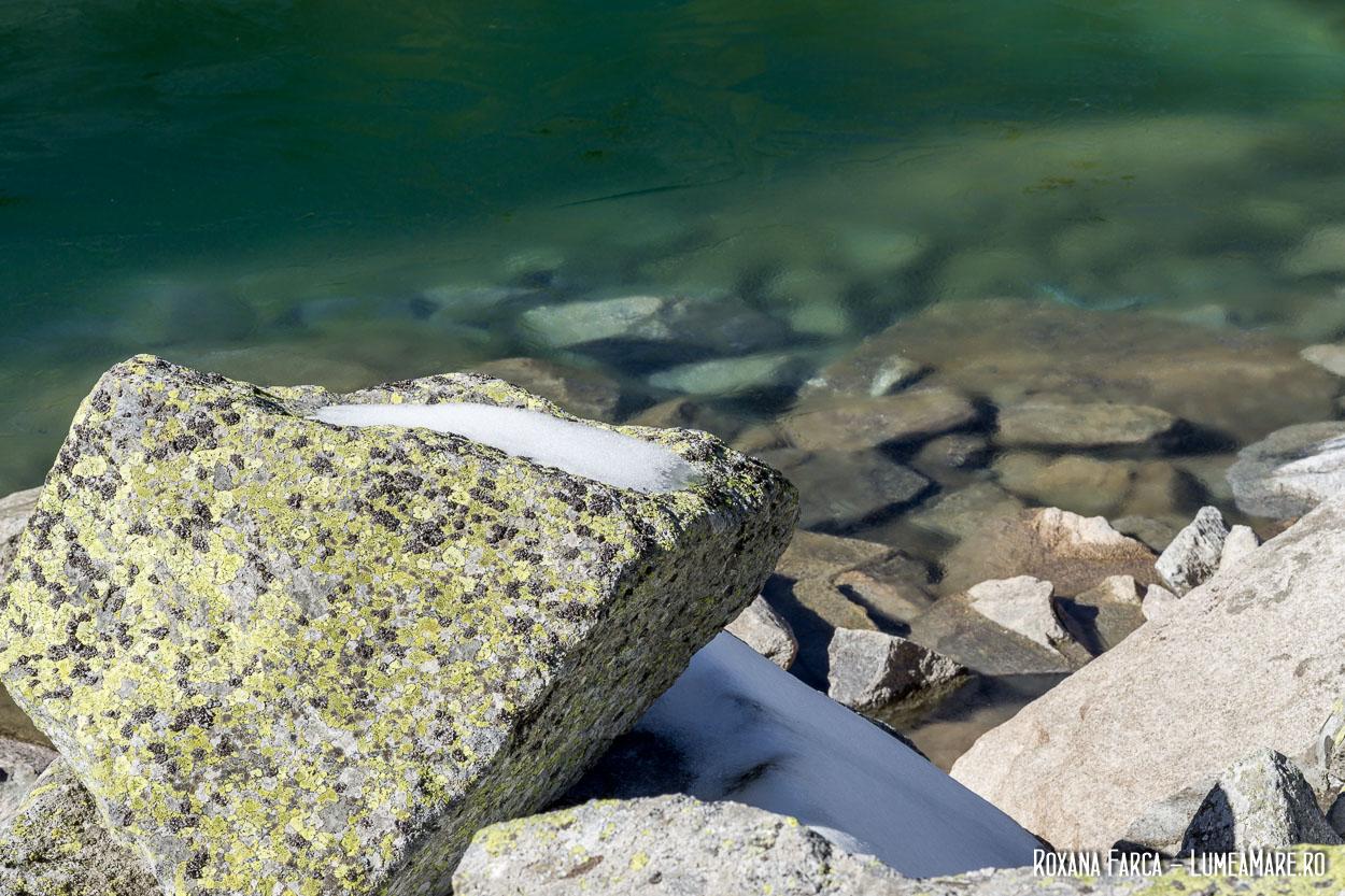 Lacul Ștevia înghețat