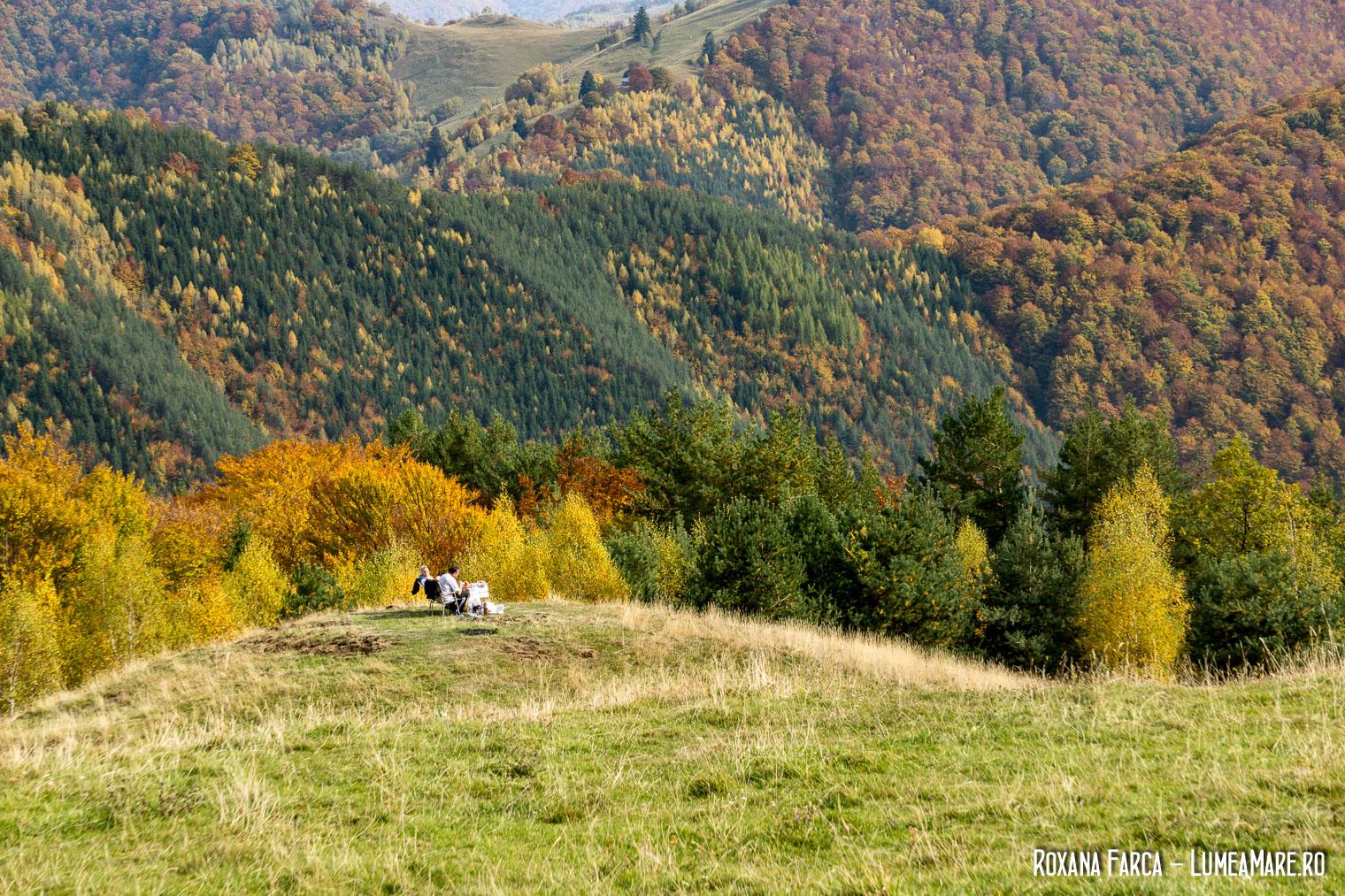 Picnic în natură, pe drumul spre Păltiniș