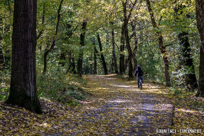 Traseu Sibiu - Rășinari