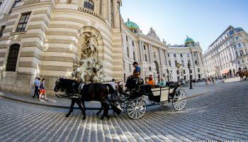 Caleasca in Viena