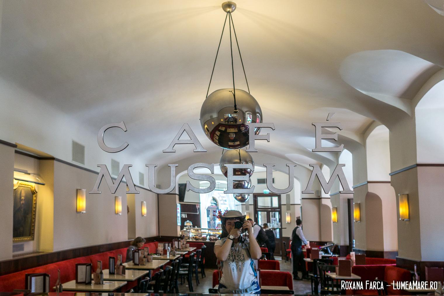 Selfie în Cafe Museum, Viena